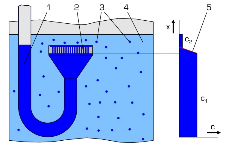 What Factors Affect the Rate of Diffusion?